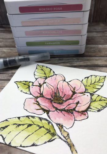 Magnoliengruß